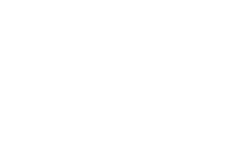 white UNM logo