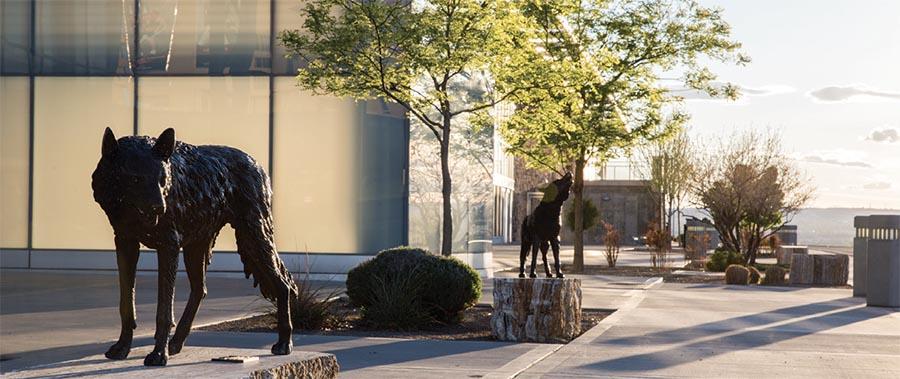 Wolf statue on UNM campus